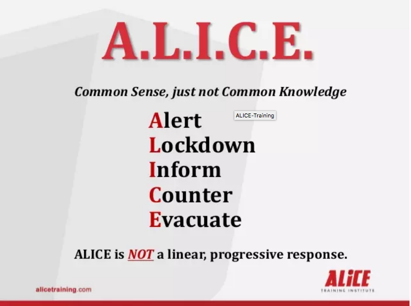 ALICE Crisis Training