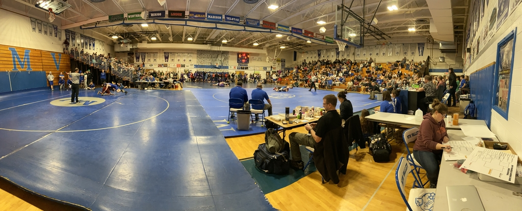 Falcons on the mat